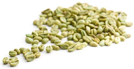 HILDEGARD BRAUKMANN Grüner Kaffee