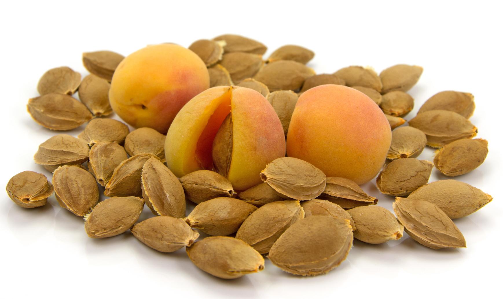 HILDEGARD BRAUKMANN Aprikosenkernöl