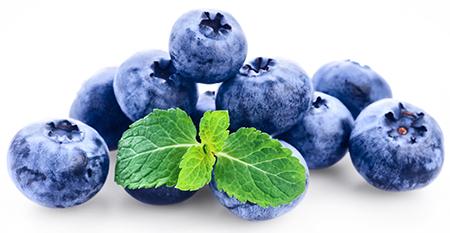 HILDEGARD BRAUKMANN Blaubeer-Frucht-Extrakt